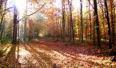 Randonnée Marche LONGPONT - en foret de Retz_ 41_Longpont_Vertes Feuilles_AR - Photo 47