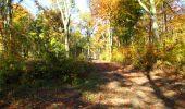 Randonnée Marche LONGPONT - en foret de Retz_ 41_Longpont_Vertes Feuilles_AR - Photo 169