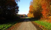 Randonnée Marche LONGPONT - en foret de Retz_ 41_Longpont_Vertes Feuilles_AR - Photo 9