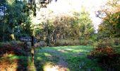 Randonnée Marche LONGPONT - en foret de Retz_ 41_Longpont_Vertes Feuilles_AR - Photo 24