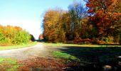 Randonnée Marche LONGPONT - en foret de Retz_ 41_Longpont_Vertes Feuilles_AR - Photo 214