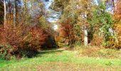 Randonnée Marche LONGPONT - en foret de Retz_ 41_Longpont_Vertes Feuilles_AR - Photo 111
