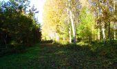 Randonnée Marche LONGPONT - en foret de Retz_ 41_Longpont_Vertes Feuilles_AR - Photo 178