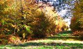 Randonnée Marche LONGPONT - en foret de Retz_ 41_Longpont_Vertes Feuilles_AR - Photo 113