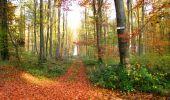 Randonnée Marche LONGPONT - en foret de Retz_ 41_Longpont_Vertes Feuilles_AR - Photo 14