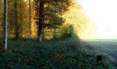 Randonnée Marche LONGPONT - en foret de Retz_ 41_Longpont_Vertes Feuilles_AR - Photo 5