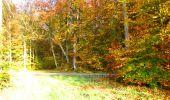 Randonnée Marche LONGPONT - en foret de Retz_ 41_Longpont_Vertes Feuilles_AR - Photo 11