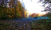 Randonnée Marche LONGPONT - en foret de Retz_ 41_Longpont_Vertes Feuilles_AR - Photo 21