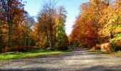 Randonnée Marche LONGPONT - en foret de Retz_ 41_Longpont_Vertes Feuilles_AR - Photo 89