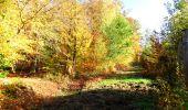 Randonnée Marche LONGPONT - en foret de Retz_ 41_Longpont_Vertes Feuilles_AR - Photo 44