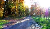 Randonnée Marche LONGPONT - en foret de Retz_ 41_Longpont_Vertes Feuilles_AR - Photo 31