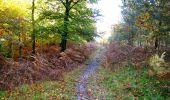 Randonnée Marche LONGPONT - en foret de Retz_ 41_Longpont_Vertes Feuilles_AR - Photo 17