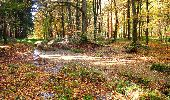 Randonnée Marche LONGPONT - en foret de Retz_ 41_Longpont_Vertes Feuilles_AR - Photo 87