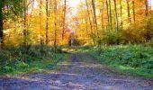 Randonnée Marche LONGPONT - en foret de Retz_ 41_Longpont_Vertes Feuilles_AR - Photo 91