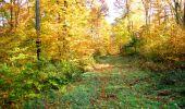 Randonnée Marche LONGPONT - en foret de Retz_ 41_Longpont_Vertes Feuilles_AR - Photo 39
