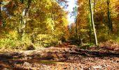 Randonnée Marche LONGPONT - en foret de Retz_ 41_Longpont_Vertes Feuilles_AR - Photo 78