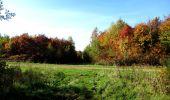 Randonnée Marche LONGPONT - en foret de Retz_ 41_Longpont_Vertes Feuilles_AR - Photo 104