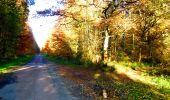 Randonnée Marche LONGPONT - en foret de Retz_ 41_Longpont_Vertes Feuilles_AR - Photo 38