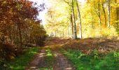 Randonnée Marche LONGPONT - en foret de Retz_ 41_Longpont_Vertes Feuilles_AR - Photo 60