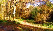 Randonnée Marche LONGPONT - en foret de Retz_ 41_Longpont_Vertes Feuilles_AR - Photo 185