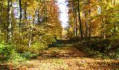 Randonnée Marche LONGPONT - en foret de Retz_ 41_Longpont_Vertes Feuilles_AR - Photo 138