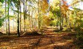 Randonnée Marche LONGPONT - en foret de Retz_ 41_Longpont_Vertes Feuilles_AR - Photo 76