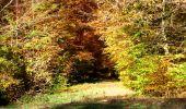 Randonnée Marche LONGPONT - en foret de Retz_ 41_Longpont_Vertes Feuilles_AR - Photo 115