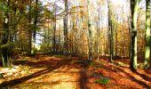 Randonnée Marche LONGPONT - en foret de Retz_ 41_Longpont_Vertes Feuilles_AR - Photo 57