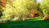 Randonnée Marche LONGPONT - en foret de Retz_ 41_Longpont_Vertes Feuilles_AR - Photo 189