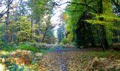 Randonnée Marche LONGPONT - en foret de Retz_ 41_Longpont_Vertes Feuilles_AR - Photo 13