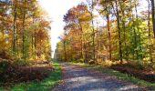 Randonnée Marche LONGPONT - en foret de Retz_ 41_Longpont_Vertes Feuilles_AR - Photo 90