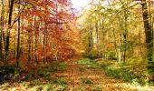 Randonnée Marche LONGPONT - en foret de Retz_ 41_Longpont_Vertes Feuilles_AR - Photo 48