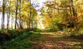 Randonnée Marche LONGPONT - en foret de Retz_ 41_Longpont_Vertes Feuilles_AR - Photo 80