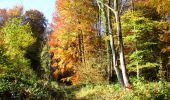 Randonnée Marche LONGPONT - en foret de Retz_ 41_Longpont_Vertes Feuilles_AR - Photo 96