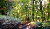 Randonnée Marche LONGPONT - en foret de Retz_ 41_Longpont_Vertes Feuilles_AR - Photo 25