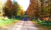 Randonnée Marche LONGPONT - en foret de Retz_ 41_Longpont_Vertes Feuilles_AR - Photo 71