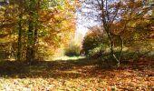 Randonnée Marche LONGPONT - en foret de Retz_ 41_Longpont_Vertes Feuilles_AR - Photo 121