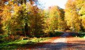 Randonnée Marche LONGPONT - en foret de Retz_ 41_Longpont_Vertes Feuilles_AR - Photo 158