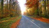 Randonnée Marche LONGPONT - en foret de Retz_ 41_Longpont_Vertes Feuilles_AR - Photo 16
