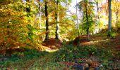 Randonnée Marche LONGPONT - en foret de Retz_ 41_Longpont_Vertes Feuilles_AR - Photo 156