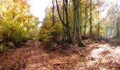 Randonnée Marche LONGPONT - en foret de Retz_ 41_Longpont_Vertes Feuilles_AR - Photo 73