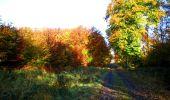 Randonnée Marche LONGPONT - en foret de Retz_ 41_Longpont_Vertes Feuilles_AR - Photo 221