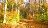 Randonnée Marche LONGPONT - en foret de Retz_ 41_Longpont_Vertes Feuilles_AR - Photo 249