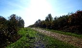 Randonnée Marche LONGPONT - en foret de Retz_ 41_Longpont_Vertes Feuilles_AR - Photo 103