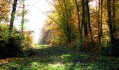 Randonnée Marche LONGPONT - en foret de Retz_ 41_Longpont_Vertes Feuilles_AR - Photo 110