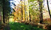 Randonnée Marche LONGPONT - en foret de Retz_ 41_Longpont_Vertes Feuilles_AR - Photo 88