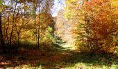 Randonnée Marche LONGPONT - en foret de Retz_ 41_Longpont_Vertes Feuilles_AR - Photo 119