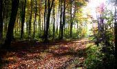 Randonnée Marche LONGPONT - en foret de Retz_ 41_Longpont_Vertes Feuilles_AR - Photo 59