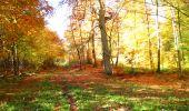 Randonnée Marche LONGPONT - en foret de Retz_ 41_Longpont_Vertes Feuilles_AR - Photo 77