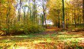 Randonnée Marche LONGPONT - en foret de Retz_ 41_Longpont_Vertes Feuilles_AR - Photo 50